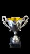 Charlton Pokal