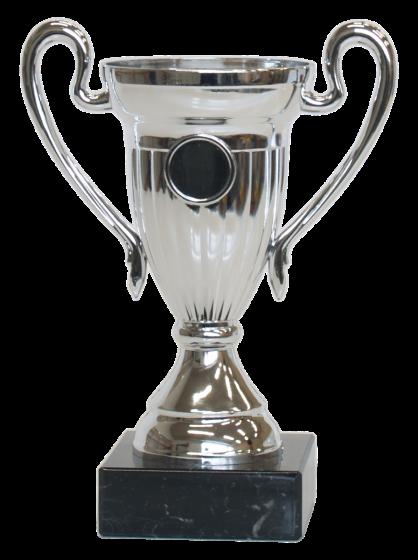 Aston Villa Pokaler