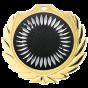 Laudrup Guldmedaljer XL