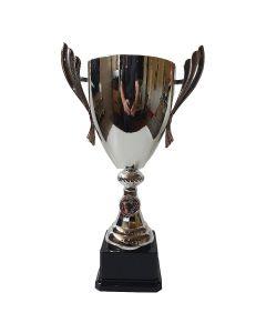 Wolverhampton Pokal